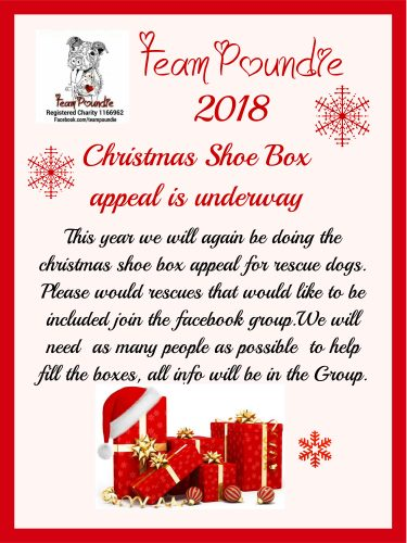 Christmas Shoe.Christmas Shoe Box Appeal 2018 Team Poundie